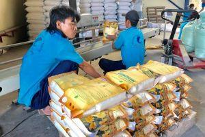 Rộng đường xuất khẩu gạo cho các doanh nghiệp nhỏ
