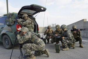 Hàn Quốc và Mỹ chuẩn bị vòng đàm phán mới về chi phí quốc phòng