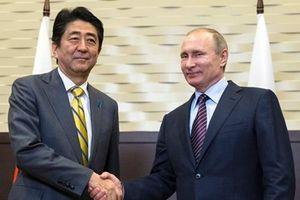 Nhật Bản: Các cuộc gặp thượng đỉnh sắp tới với Nga rất quan trọng
