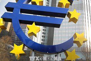 ECB: Tình hình kinh tế Eurozone vẫn vững mạnh