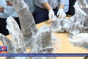 53kg sừng động vật nghi là sừng tê giác được phát hiện qua soi chiếu
