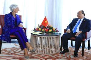 IMF tiếp tục hỗ trợ Việt Nam giữ vững ổn định kinh tế vĩ mô, thúc đẩy tăng trưởng kinh tế