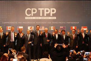 Trung Quốc có thể gia nhập CPTPP để 'đấu' với Mỹ