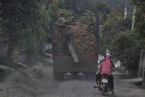 Cận cảnh xe quá tải 'xé nát' đường vào Đắk Nhoong
