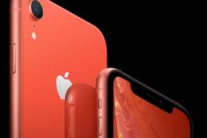 iPhone XR sẽ là vị cứu tinh của Apple tại thị trường Trung Quốc