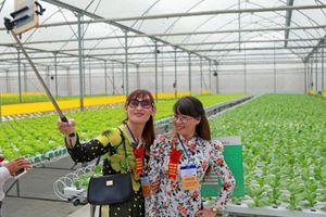 Nông dân xuất sắc hào hứng khi thăm thiên đường rau sạch VinEco