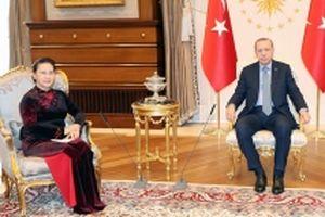 Chủ tịch QH Nguyễn Thị Kim Ngân hội kiến Tổng thống Thổ Nhĩ Kỳ