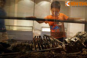 Kinh ngạc bộ hài cốt 2.300 tuổi còn nguyên vẹn giữa Hà Nội