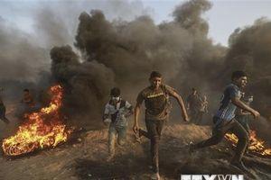 Đụng độ ở biên giới Gaza-Israel, ít nhất 6 người Palestine thiệt mạng