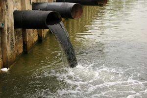 Phạt công ty sản xuất thức ăn chăn nuôi gần 200 triệu đồng vì xả thải gây ô nhiễm