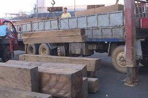 Công an tỉnh Đắk Lắk bắt vụ vận chuyển gỗ lậu