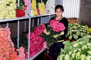 Trước lễ 20-10, hoa Đà Lạt tăng giá mạnh