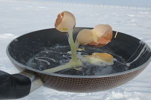 Trứng chưa rơi vào chảo đã đóng băng và cuộc sống thú vị ở Nam Cực