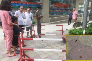 Nghi vấn người chồng đi ô tô bắn 2 phát súng khiến vợ bị thương ở Hà Nội