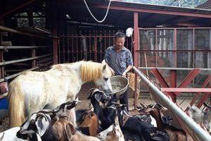 Nông dân mong chờ gì ở diễn đàn 'Khơi nguồn nông sản Việt'?