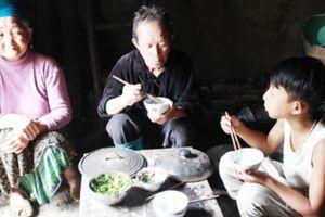 Lao động nông thôn Lào Cai đi làm thuê: Trả giá bằng cả tính mạng