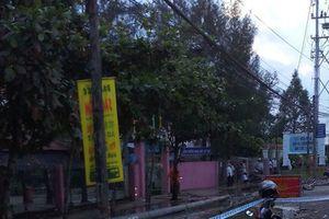 Vụ dây điện đứt khiến 6 học sinh thương vong ở Long An: Tại ông trời?