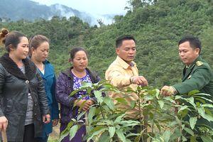 Thông thạo tiếng Lào để hoàn thành tốt nhiệm vụ