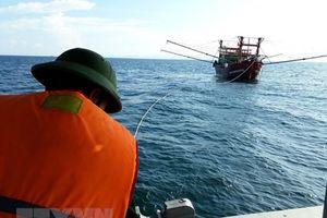 Bình Định: Lai dắt tàu cá cùng 7 ngư dân gặp nạn trên biển