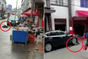 Vợ giận dỗi nằm lăn ra đường, chồng lên xe nổ máy chèn qua