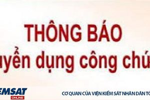 VKSND Tp. Hà Nội tuyển dụng 18 công chức