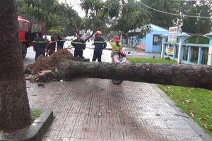 Lốc xoáy quét qua 2 huyện tỉnh Đồng Nai gây thiệt hại nhiều tài sản
