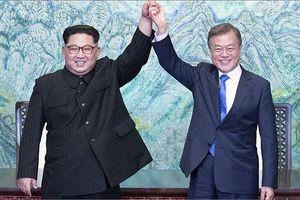 Tổng thống Hàn Quốc với sứ mệnh mời Giáo hoàng tới thăm Triều Tiên