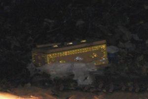 Xác thai nhi phân hủy trong quan tài ngoài bãi rác