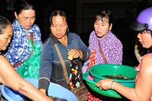 Những ngôi chợ cá 'ma' rất lạ họp giữa đêm khuya mùa lũ miền Tây
