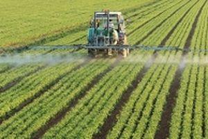 Tổng thống Nga cam kết tiếp tục phát triển nông nghiệp, nông thôn