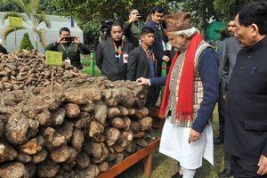 Ấn Độ kêu gọi làm cách mạng organic
