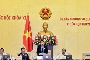 Ủy ban Thường vụ Quốc hội khai mạc Phiên họp thứ 28