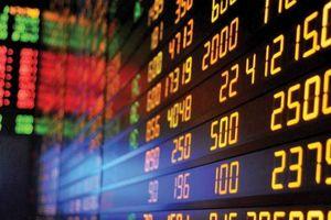 Hàng loạt cổ phiếu 'hot' ngân hàng, dầu khí... giảm sâu