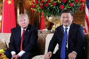 Tổng thống Trump có thể sẽ gặp Chủ tịch Tập Cận Bình tại Argentina