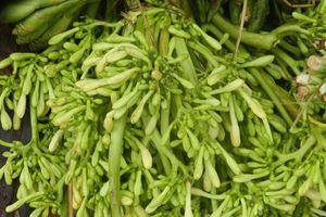 Những món rau rừng 'đỉnh nhất', ăn là nghiện của vùng Tây Bắc