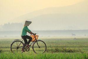 Lương thực tiếp tế của người mẹ chồng đạp xe 4km để đưa tận tay con dâu bầu - câu chuyện khiến chị em ấm lòng nhất hôm nay