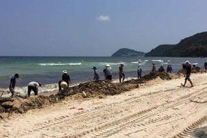 Phú Quốc: Hàng chục tấn lục bình chết trôi dạt ra bờ biển