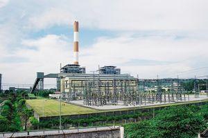 Nhiệt điện Phả Lại: Lợi nhuận quý III tăng 15% bất chấp doanh thu giảm 14%