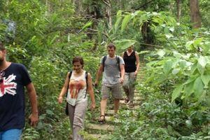 Quảng Bình: Công bố 9 điểm tham quan du lịch sinh thái và diễn giải môi trường Vườn thực vật