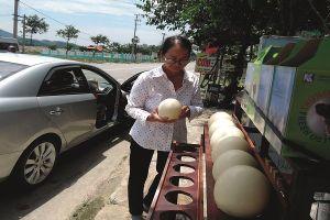 Đến Đà Nẵng du lịch, mua trứng đà điểu