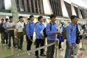 Lao động tại Hàn Quốc và thực tập sinh Nhật Bản về nước: Nhiều cơ hội việc làm lương cao