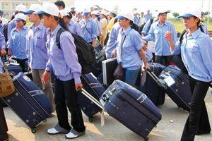 Hưng Yên: Thanh tra hoạt động XK lao động