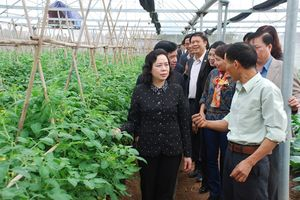 Nông nghiệp CNC sẽ giải quyết vấn đề ATTP