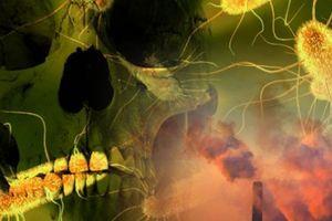 Nóng: 'Cái chết đen' đang chuẩn bị quay lại tàn sát nhân loại