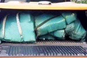 Bắt vụ vận chuyển hơn 300 kg ma túy đá