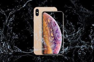 iPhone 2019 cũng sẽ có tiêu chuẩn kháng nước IP68