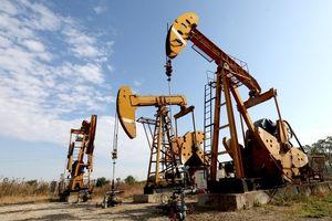 Giá dầu thế giới 16/10: Giá dầu đồng loạt giảm nhẹ