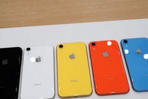 Google Pixel 800 USD so với iPhone XR 750 USD: Mèo nào cắn mỉu nào?