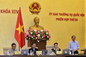 Tiếp tục thí điểm cấp thị thực điện tử cho người nước ngoài nhập cảnh vào Việt Nam