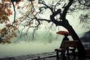 Gió mùa Đông Bắc tràn về, Bắc Bộ chuyển lạnh kèm mưa rào rải rác